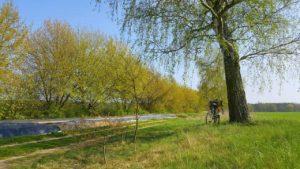 Fahrrad fit für den Frühling machen - Berliner Fahrradwerkstatt